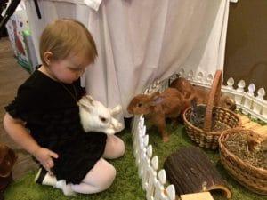 Шоу с кроликами