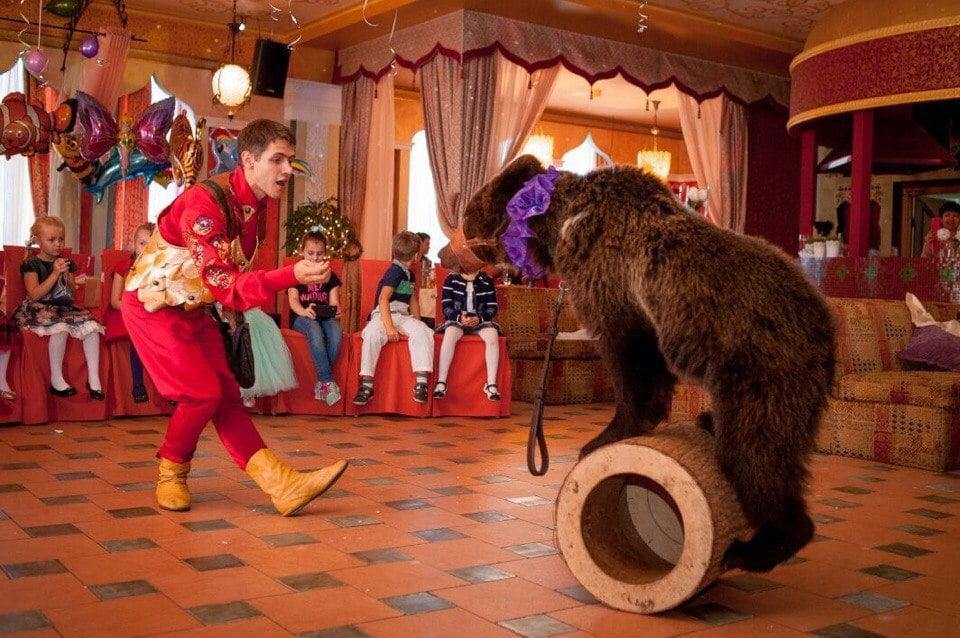 Шоу с животными